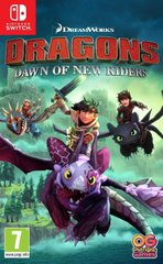 Гра (Switch) Dragons Dawn of the New Riders